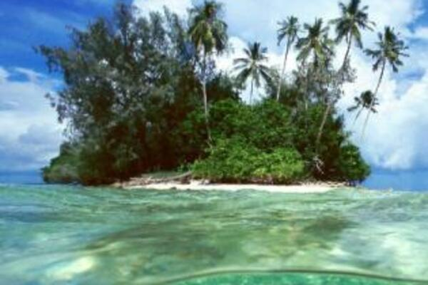 49 per cent of the 22,000 visitors to the Solomon Islands in 2011 were from Australia.