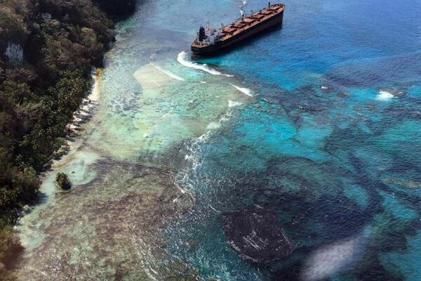 Media reports show a thick oily blanket of tar spreading over the beaches, rockpools, logs and leaves affecting human activity.