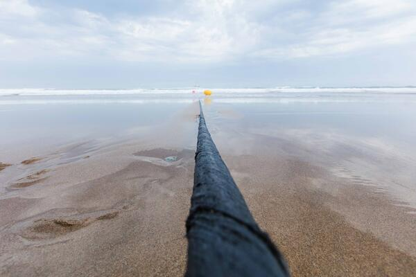 Undersea cables are the backbone of the internet connecting faraway places like the Pacific to the world. These submarine fiber optic cables permit the world's web traffic to flow.