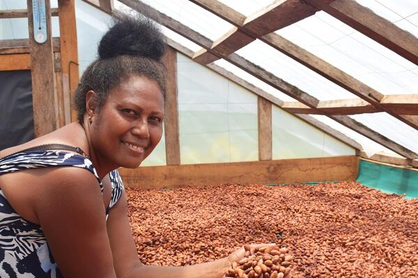 Lucy Kasimwane inspects cocoa beans in a solar drier on her farm in Makira.