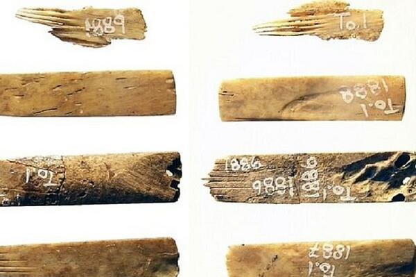 The world's oldest-known tattooist's kit has tools (pictured) made from human bones, scientists have confirmed. The kit has been confirmed to be 2,700 years old by carbon dating.