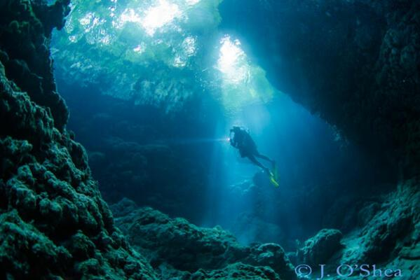Mbulo Caves in Mbulo Island has a series of caves cut into the reef around the island. This dive is all about the light; swimming in and out of caves, finding beams of light to shoot. A green jungle canopy lies above.