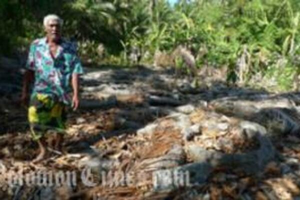 SPC Assists Post-Drought Tuvalu with Food Security