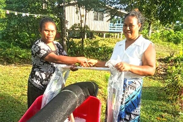 MAL Extension officer in Renbel, Florence Kwai hands over kava project farming tools to the representative of Renkav new kava planting family project.