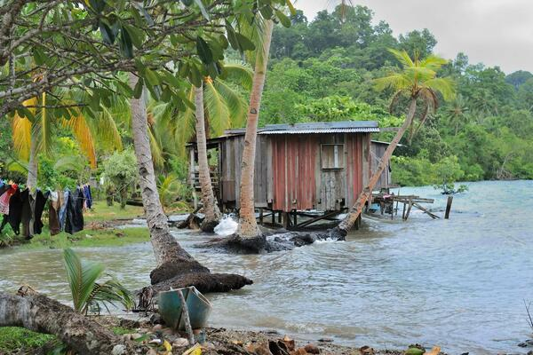 Today, a number of locations within the Solomon Islands are facing immediate and direct climate change impacts such as sea-level rise and food and water insecurity.