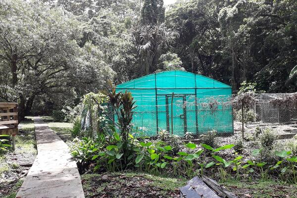 Its aim is to attract visitors and families to the garden. But since its upgrade more and more unwanted activities are taking place at the garden.