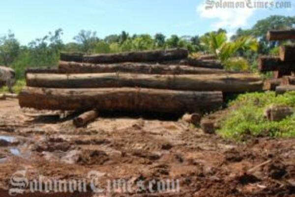Kabutaulaka states that the decline in income from the logging industry is an opportune time to relook at our economy.