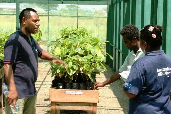 Dr Konam (L) supported the work of agriculture extension officers to train farmers on the importance of integrated pest and disease management in cocoa gardens.