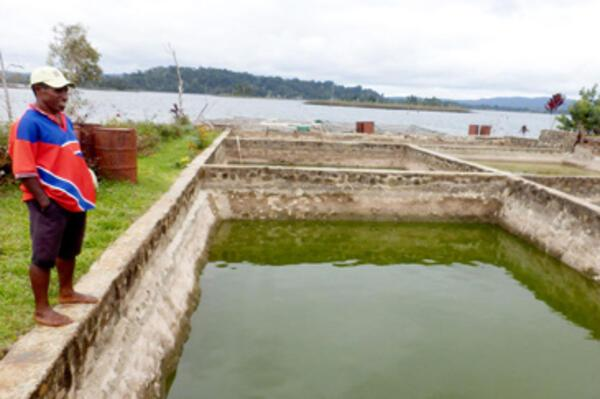 SPC Works to Strengthen Pacific Aquaculture Farmer Groups