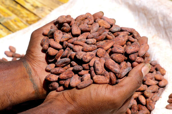 The main buyers of products like timber, cocoa, tuna, copra, though hard hit, were able to absorb the country's export.
