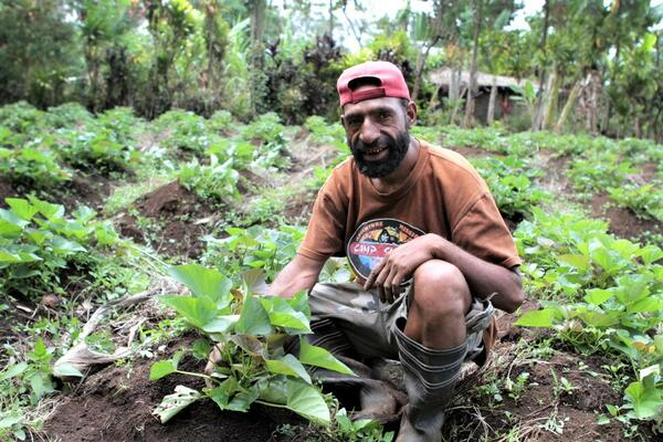 While it is difficult to know what the profit increase would be once various costs are taken into account, it is clear that significantly more kina could have been entering rural and remote economies in PNG since 2015.