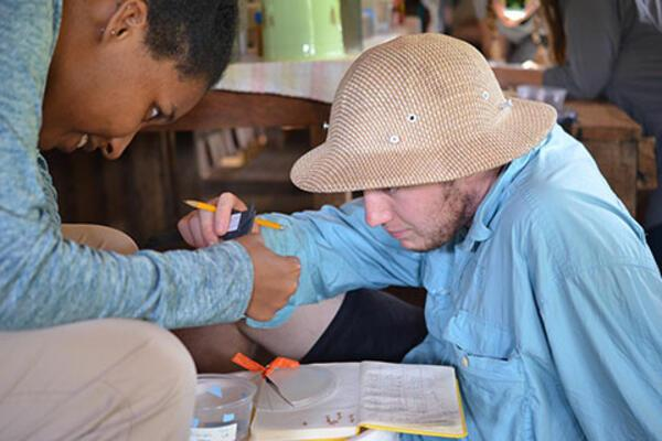 Aronson and another student measure the head size of ants as part of a field research course in the Solomon Islands.