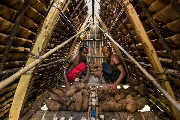 Two men pile tubers in a yam house. Years of drought have left them tragically empty.