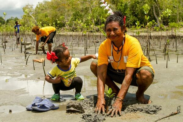 Part of the women's project involves restoring and restocking mangroves.