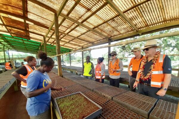 KFPL employees showing the Honourable Minister and Member of Parliament for Gizo/Kolombangara, Lanelle Tanandaga and The Australian High Commissioner, Dr Lachlan Strahan the plant nurseries used by local out-growers.