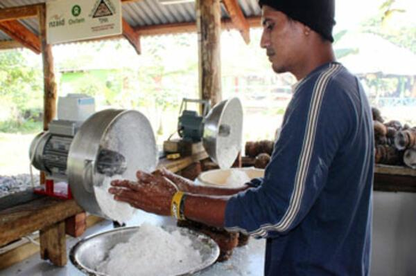 Rural Communities Reap Benefits from Coconuts