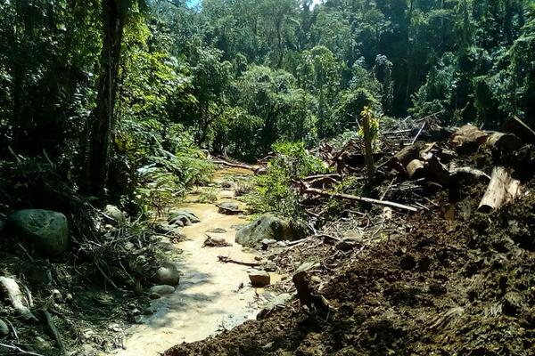 This shutdown is a direct consequence of illegal and unmanaged logging in the Kohove and Konguali catchment areas and is outside Solomon Water's control, the water authority said in a prepared statement.