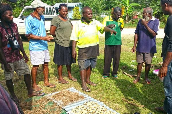Co-facilitated by lead Kava Farmer, Mr. Patrick Soruevo, a total of 22 farmers from ward 12 around Ringi area participated in the training.