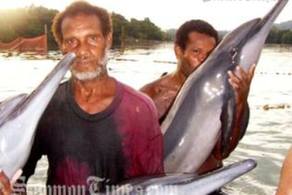 Solomon Islands tribemen hunting dolphins.