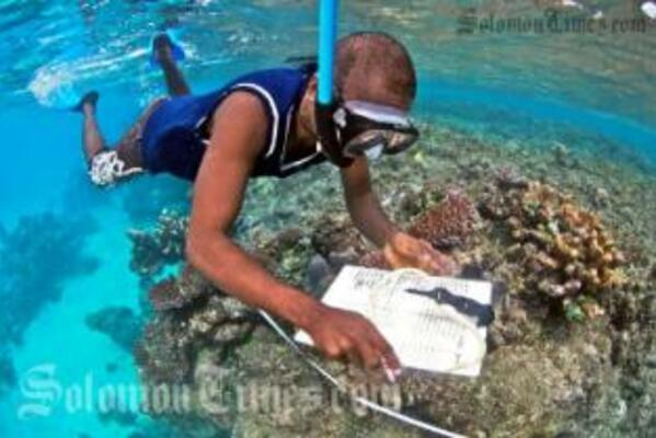 TDA marine monitor Bobbi Fio conducting a Reef Check survey on Tetepare Island.